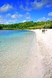 Fraser Island, Australia Royalty Free Stock Images