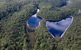 Fraser Island Australia naturplats arkivbild