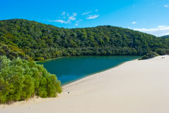 Fraser Island, Queensland, Australia. Fraser Island, the sand island, Queensland, Australia Stock Photos