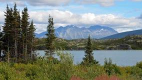 Fraser Meadows, Columbia Britannica fotografie stock libere da diritti
