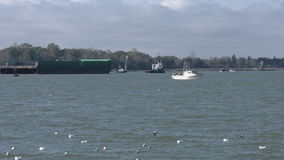 Fraser River Boat Traffic stock video