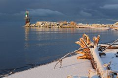 Fraser River Driftwood Snow Royalty Free Stock Images