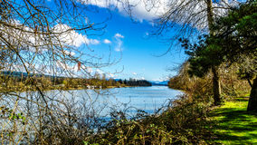 The Fraser River at Fort Langley. The mighty Fraser River as it flows past the historic village of Fort Langley in British Columbia, Canada on a nice winter day Stock Photography