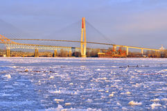Fraser River full of floating ice Stock Image