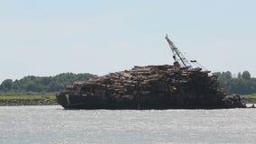 Fraser River, Loaded Log Barge stock video footage