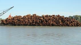 Fraser River Log Barge Close upp Royaltyfria Bilder