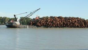 Fraser River Log Barge stock video
