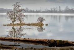 Fraser River Mist, Brits Colombia stock foto