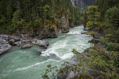 Fraser River at Overlander Falls Trail, Mount Robson Provincial. Park,  near Valemount, British Columbia, North Thompson Royalty Free Stock Photo