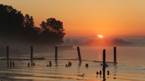 Fraser River Rising Sun stock video footage