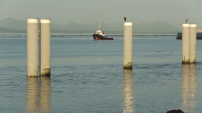 Fraser River Sand Barge stock video