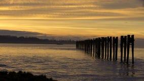 Fraser River Tugboat Sunset 4K UHD stock video