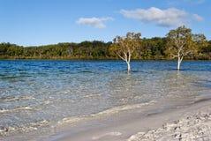 fraser wyspy jeziora mckenzie Fotografia Royalty Free