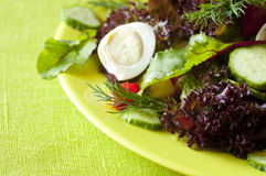 Frash diet salad. Dish of boiled eggs and lettuce royalty free stock images