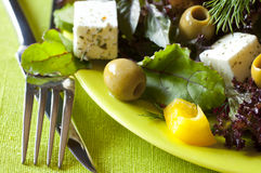 Frash diet salad. Dish of boiled eggs and lettuce royalty free stock image