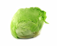Frash lettuce Royalty Free Stock Photo