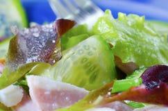 Frash salad Stock Photos
