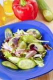 Frash salad Royalty Free Stock Image