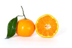 Frash tangerine Royalty Free Stock Photography