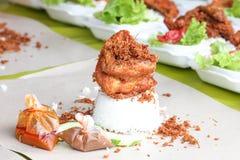 Frasiga kryddiga Fried Chicken White Ric Fotografering för Bildbyråer