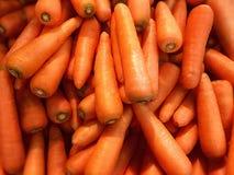 Frasiga, smakliga och högt näringsrika morötter Fotografering för Bildbyråer