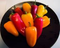 Frasiga spanska peppar Arkivfoto