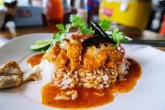 Frasigt griskött för ris med torr chili och koriander i den vita plattan arkivfoton