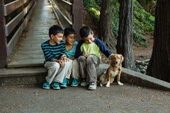 Fratelli che si siedono insieme al loro cane fotografia stock