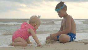 Fratelli germani allegri sulla spiaggia stock footage