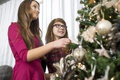 Fratelli germani che decorano sull'albero di Natale a casa Immagini Stock