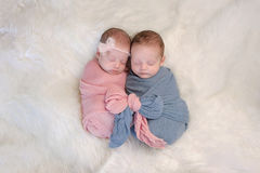Fraternal Twin Baby Brother and Sister. Two month old, boy and girl fraternal twin babies. They are sleeping and swaddled together in pink and blue wraps that royalty free stock photo