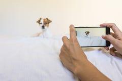 Frau übergibt das Machen eines Fotos mit einem Handy netten Junge Lizenzfreie Stockfotografie