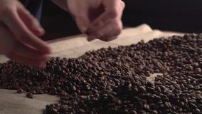 Frau übergibt das Sortieren von geringe Qualität ` s von verrosteten Kaffeebohnen stock footage