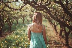 Frau allein in einem Obstgarten stockfoto