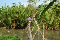Frau auf Affebrücke in Vietnam Can Tho Lizenzfreie Stockfotos