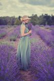 Frau auf dem Lavendelgebiet Stockbilder