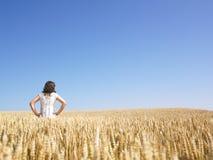 Frau auf dem Weizen-Gebiet Stockbilder