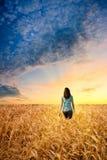 Frau auf dem Weizengebiet Stockfotografie