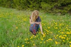 Frau auf der Wiese genießen Natur mit sowthistle Stockfotografie