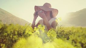 Frau auf einem Gebiet von den Blumen, die Fotos machen stock footage