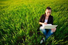 Frau auf einem grünen Gebiet mit einem Laptop. Sommer lizenzfreie stockfotografie