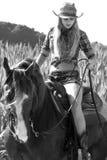 Frau auf einem Pferd Stockfotos