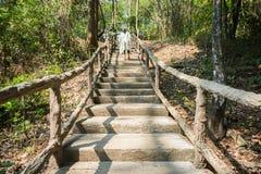 Frau auf Gehweg durch Forest Park Lizenzfreies Stockfoto
