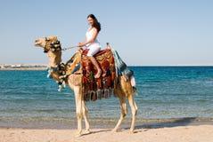 Frau auf Kamel lizenzfreie stockfotografie
