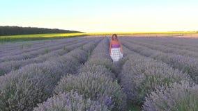 Frau auf Lavendelfeld stock video footage