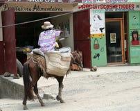 Frau auf Pferd in Haiti stockbilder
