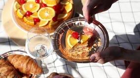 Frau auf Picknick Torte, Glas und Flasche Wasser, auf überprüfter Sänfte stock video