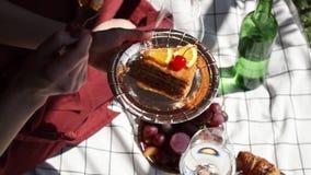Frau auf Picknick Torte, Glas und Flasche Wasser, auf überprüfter Sänfte stock footage