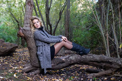 Frau auf Wald Stockbilder