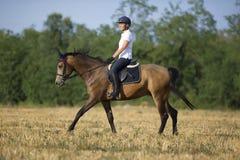 Frau auf zu Pferde Lizenzfreie Stockbilder